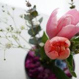 水やりと花瓶不要プランがステキ!LIFULL FLOWER