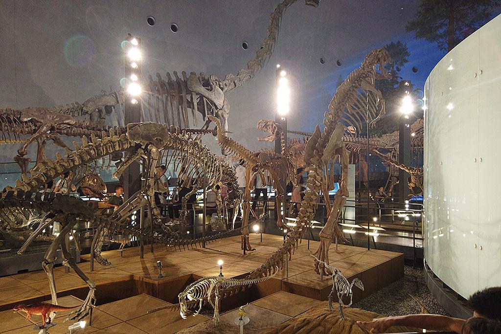 福井県立恐竜博物館の館内