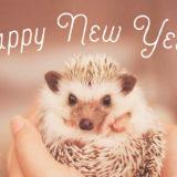 さよなら2019年!こんにちは2020年&目標